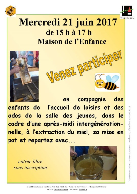 Récolte de miel